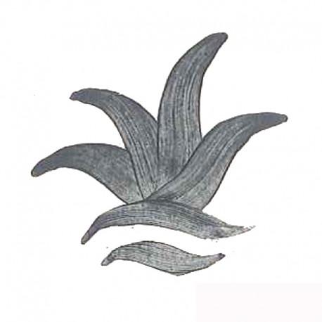 COLORANT GRIS D204