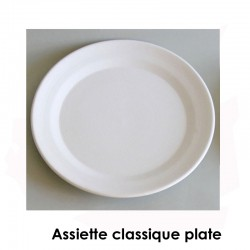 BISCUIT FAIENCE ASSIETTE CLASSIQUE PLATE N°5 DIAM 360 MM