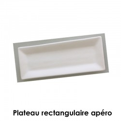 BISCUIT FAIENCE PLATEAU RECTANGULAIRE APERO 260*90 MM